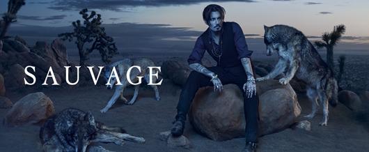 Dior Herren Parfum Sauvage Jetzt Günstiger Online Kaufen