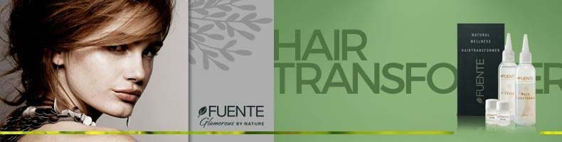 Fuente Hairtransformer