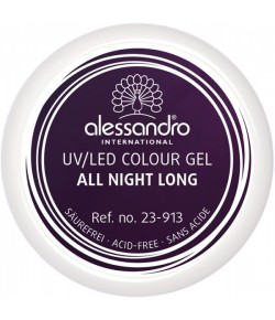 Alessandro Colour Gel 913 All Night Long 5 g