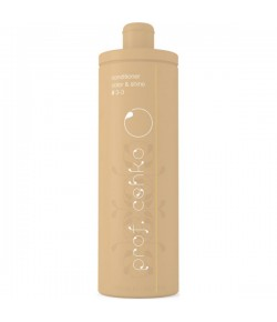 C:EHKO prof. cehko Conditioner Color & Shine #3-3 1000 ml