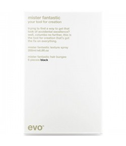 EVO Hair Style Mister Fantastic Your Tool for Creation (black)