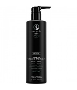 Paul Mitchell Awapuhi Wild Ginger Keratin Intensive Treatment 500 ml