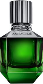 Roberto Cavalli Paradise Found For Men Eau de Toilette (EdT) 50 ml